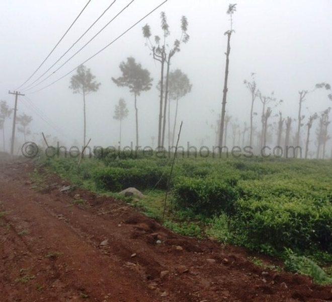 kotagiri land for sale