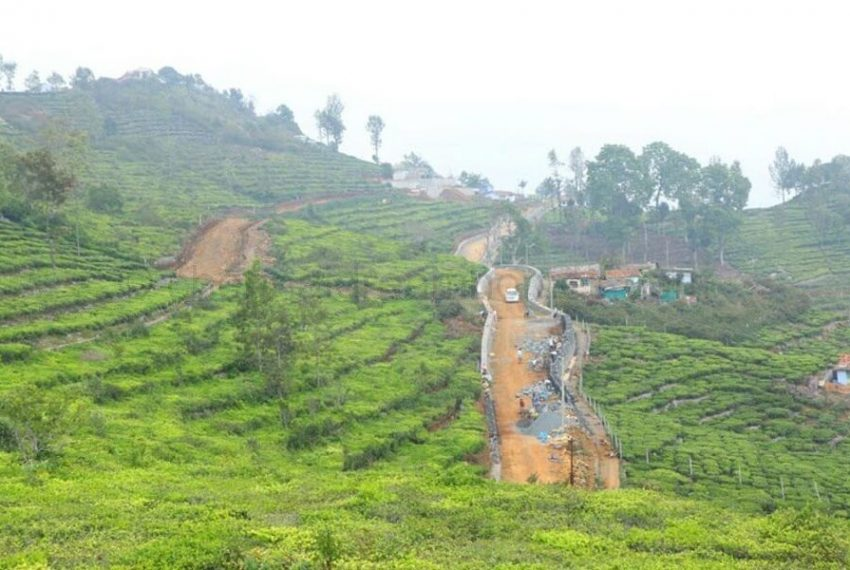 Terraced Contours of Tea Plantations
